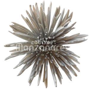 Anastasia metalic silver glitter